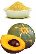 Lucuma bio antioxydant naturel puissant
