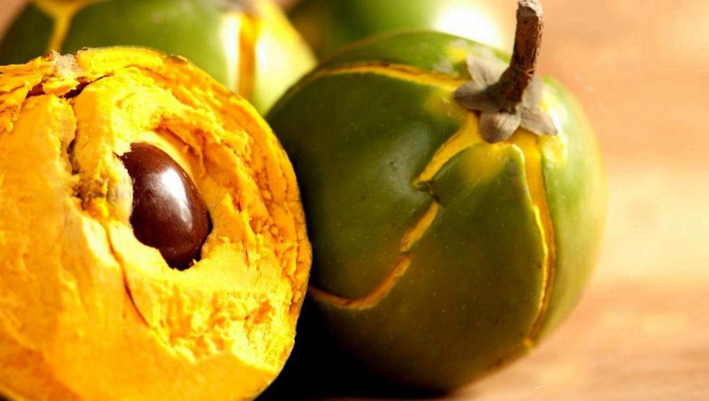La poudre de lucuma bio comme la poudre de curcuma bio aide à lutter contre le cancer